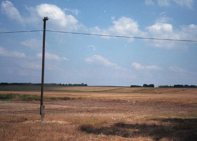rolnictwo-ekologiczne